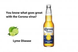 Corona raakt roeien, een overzicht van de effecten