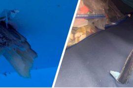 Marlijnen doorboren roeiboten tijdens Atlantic Challenge